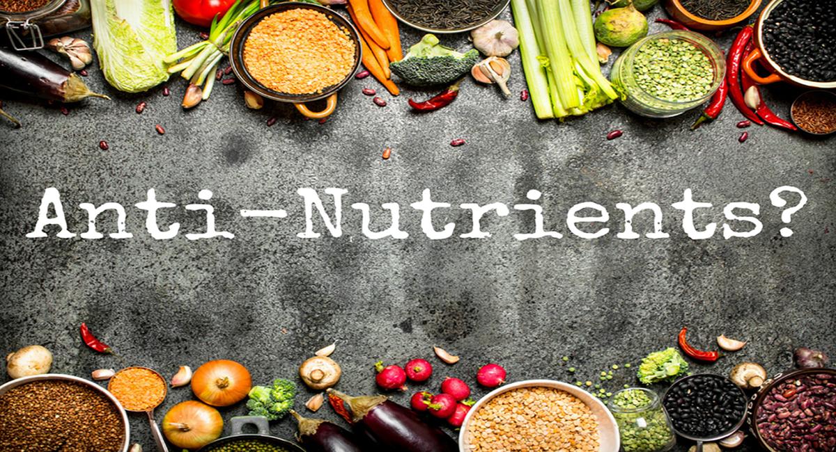 antinutrient ne demek, antinutrient nedir, antinutrient miktarı