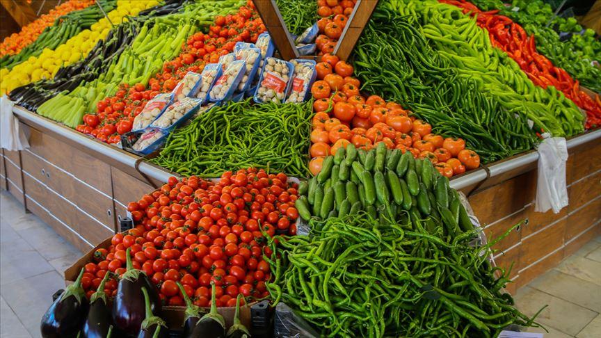 sebze temelli beslenme, sadece sebze ile beslenme, sebze ağırlıklı beslenme